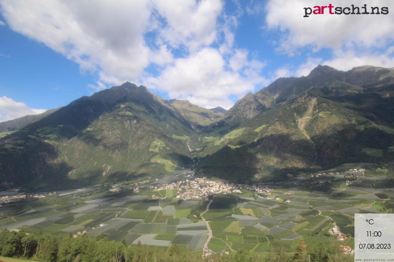 Webcam Niederhof